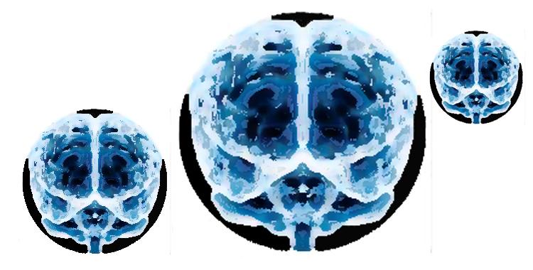 cerebro_coaching_cambia_el_chip_destaca-te
