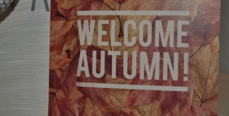 Descuentos ofrecidos por Etnia en la línea de cosméticos de la temporada de otoño