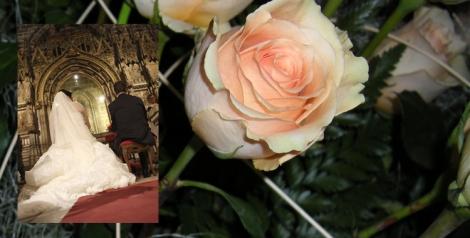 Detalle floral e imagen de enlace.