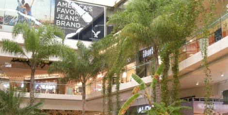 Riviera es verde por naturaleza, nunca mejor dicho. Hay un gran respeto por el entorno y hasta los centros comerciales de la zona lo cumplen