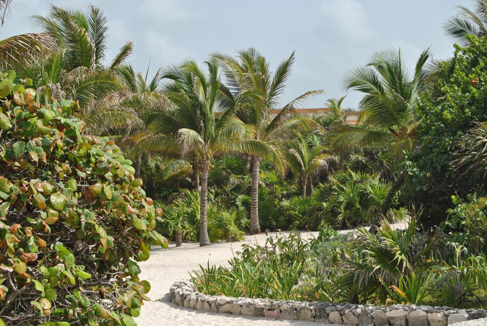 Las instalaciones del Bahía Príncipe están ubicadas en plena selva. Un lugar idílico para celebrar el amor